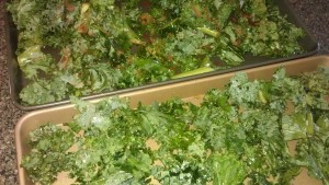 Kale tossed in oil and ready to bake.